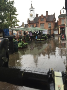 Looking out on to Ampthill Square on a wild, wet and windy day
